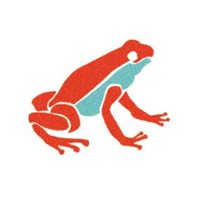 frog_demo